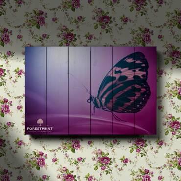 Картина на доске Бабочка №3