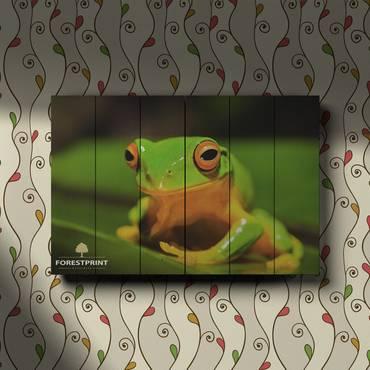 Картина на дереве Лягушка