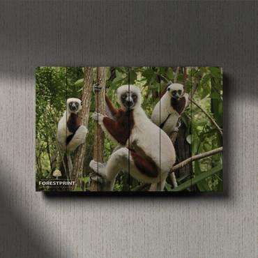 Картина на дереве Лемур
