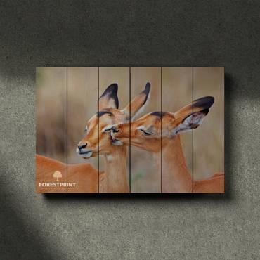 Картина на дереве Антилопы