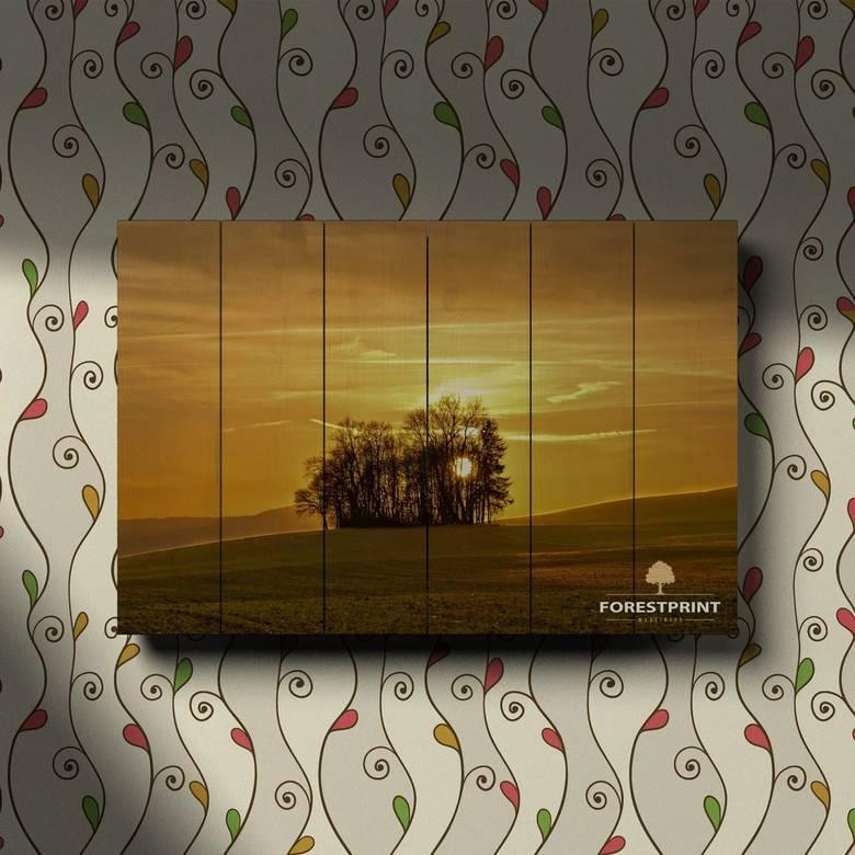 Картина на доске Закат №4